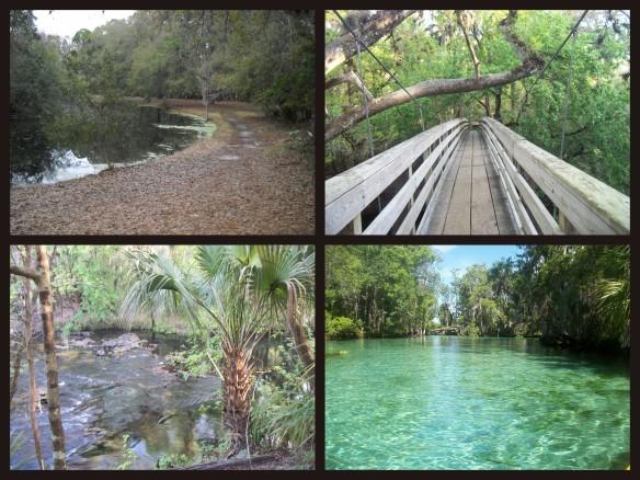 Home Florida